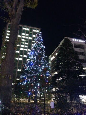 千葉工大のツリー